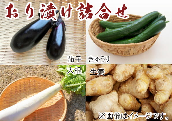 坂倉・おり漬け詰合せの国産野菜たち