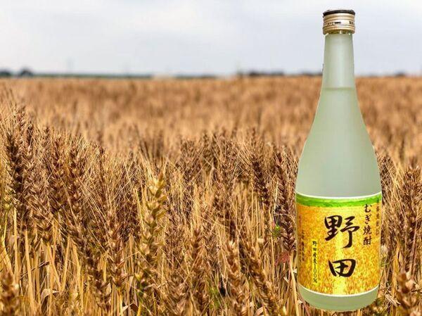 野田市の麦畑と無焼酎「野田」